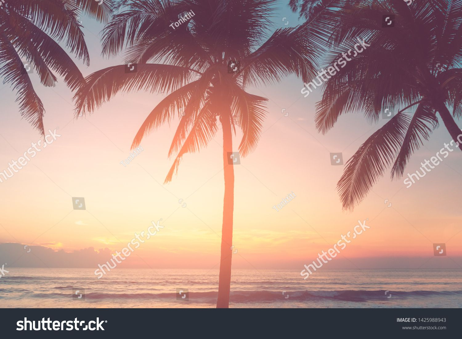 Beautiful Tropical Beach With Palm Tree On Sunset Twilight Sky Clouds Abstract Background Copy Space O Nature Travel Adventure Tropical Beach Beach Palm Trees Tropics palm trees sunset clouds sky