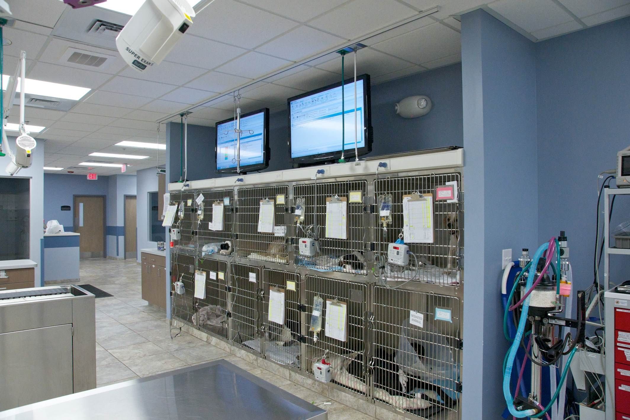 CVRC Photo Walkthrough Arquitetura hospitalar, Clinica