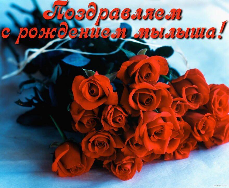 очень цветы фото красивые букеты с рождением сына трапециевидные, длинные укороченные