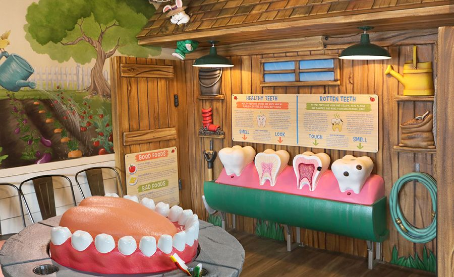 Pictures of Garden Critters in Dental Waiting Room