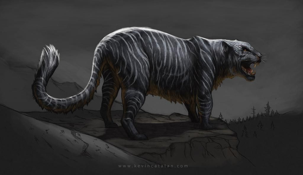 27++ Shadowcats ideas in 2021