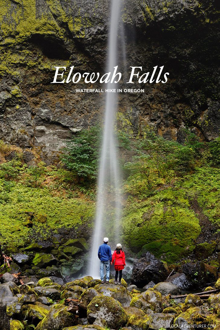 Elowah Falls Hike (this one is short and easy) -Chasing Waterfalls in Oregon // localadventurer.com