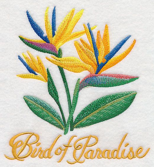 Machine Embroidery Designs At Embroidery Library Bird Of Paradise Watercolo Machine Embroidery Patterns Machine Embroidery Designs Flower Embroidery Designs