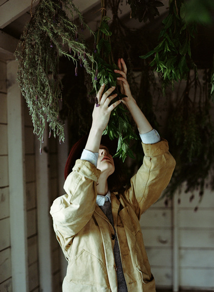 drying herbs | by Parker Fitzgerald for Kinfolk Vol. 5
