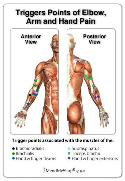 Trigger Points Of Elbow Arm And Hand Pain Massage