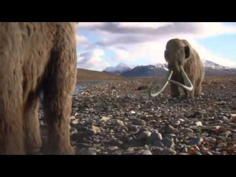 Woolly Mammoth: Secrets From Ice - Documentary