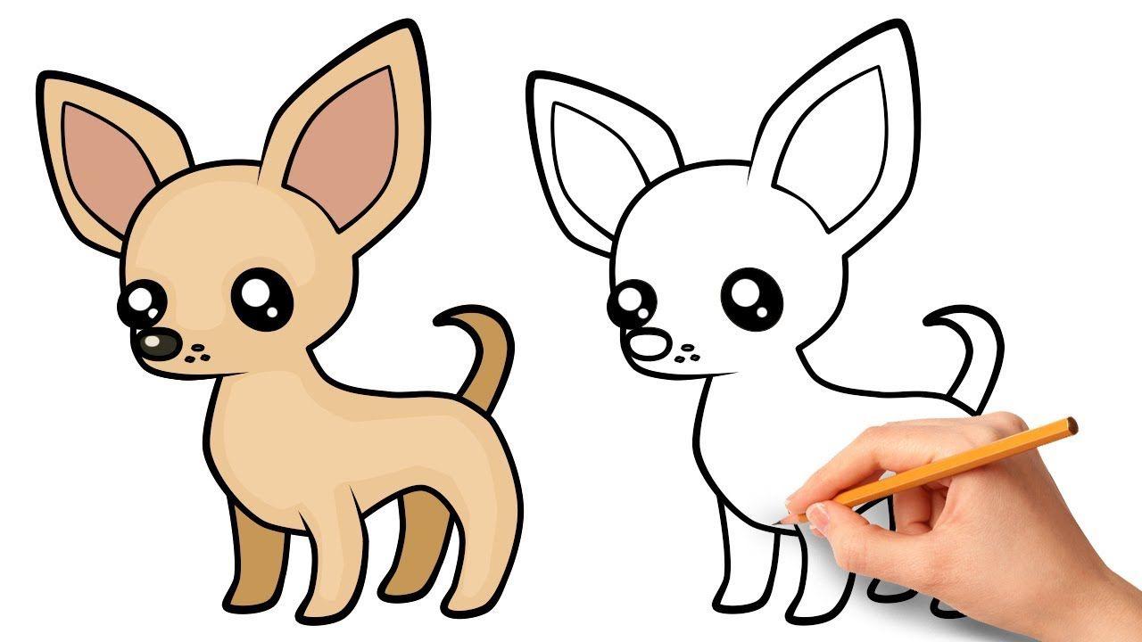 How To Draw A Chihuahua Youtube Chihuahua Drawing Chihuahua