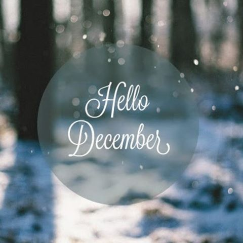 And my most favorite month of the year begins... #christmas #hohoho #christmastime #december #santa #santaclaus #gifts #giftgiving #wrapping #giftwrap #giftwrapping #joytotheworld #tistheseason #happy #joyful #season #seasonal #winter #holiday #holidays #merrychristmas #happyholidays #gladtidings #elf #northpole #snow #hello #newmonth #hellojanvier And my most favorite month of the year begins... #christmas #hohoho #christmastime #december #santa #santaclaus #gifts #giftgiving #wrapping #giftwra #bonjourdecembre