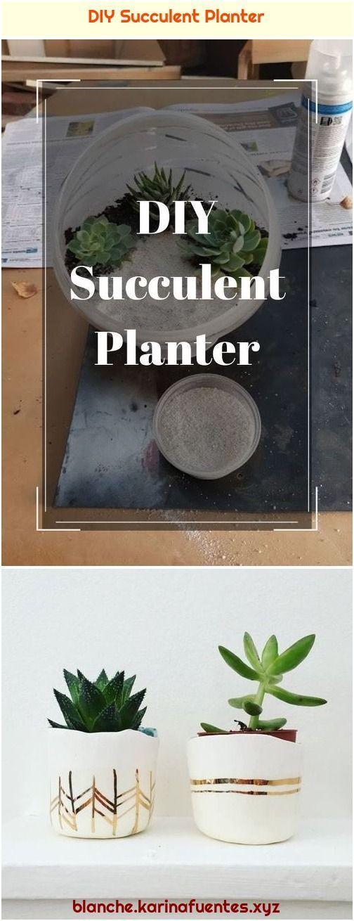 Photo of DIY Succulent Planter#diy #planter #succulent