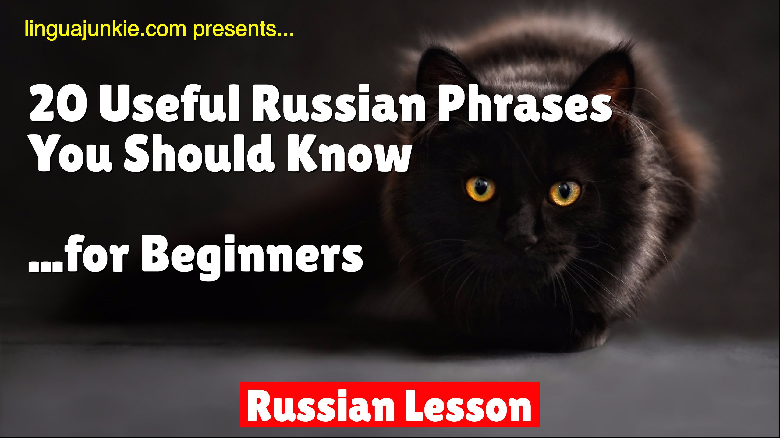 Russian Lesson Learn 20 Useful Russian Phrases For
