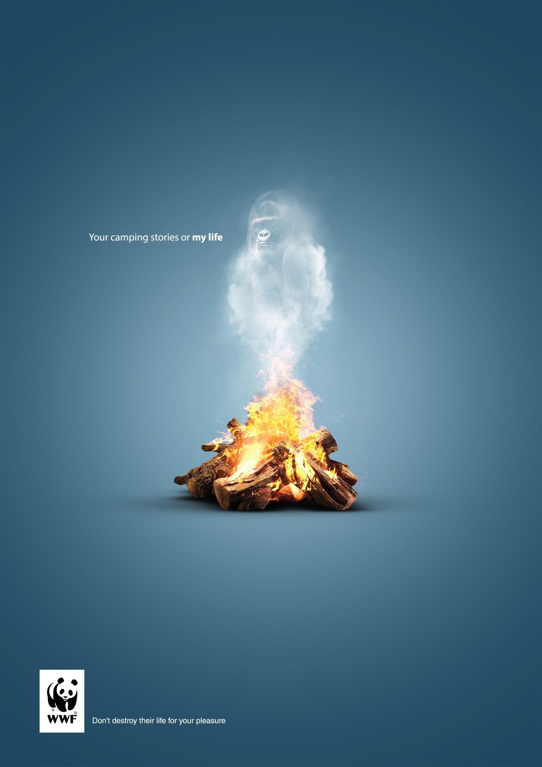WWF: Gorilla | Wwf poster, Social media design inspiration ...