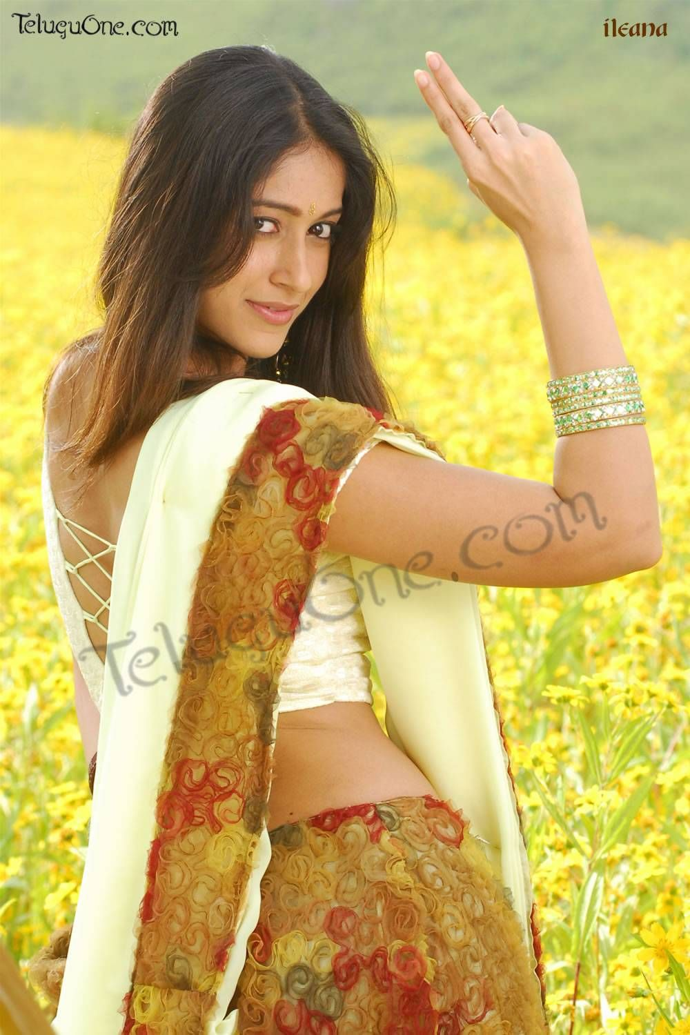 there's a subtle texture on this one, very elegant.  http://www.sareedreams.com/wp-content/uploads/2008/05/creme-saree-blouse.jpg
