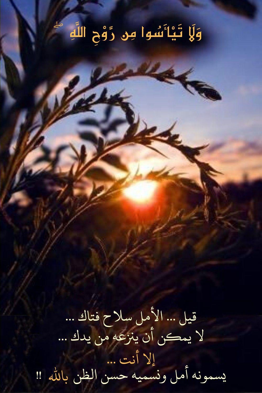 قرآن كريم آية و ل ا ت ي أ س وا م ن ر و ح الل ه Movie Posters Movies Poster