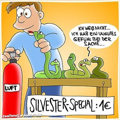 Silvester Video Lustig