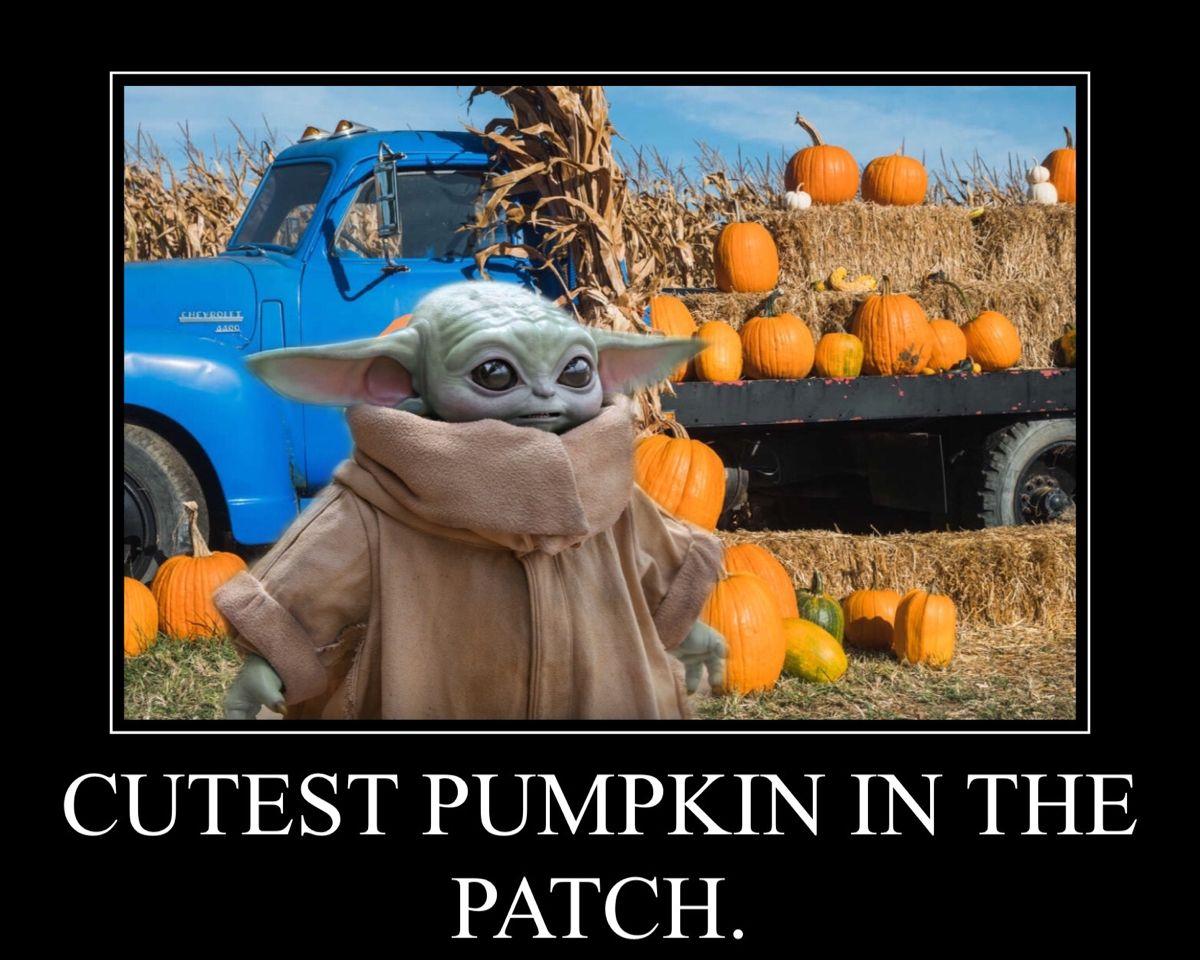 Pin By Penny Ronan On Baby Yoda Yoda Funny Yoda Halloween Star Wars Humor