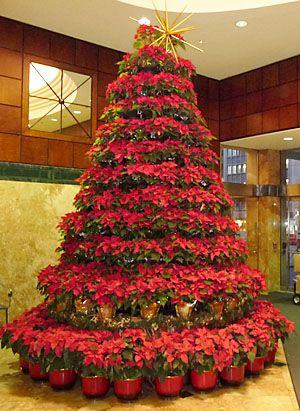 Un hermoso árbol de Navidad hecho con Nochebuenas. #Original ...