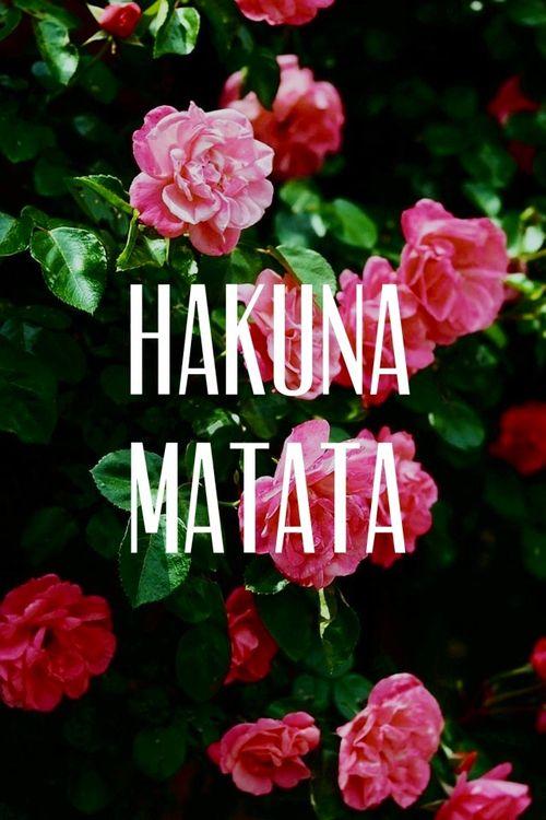 Os seus problemas você deve esquecer, isso é viver, é aprender... HAKUNA MATATA