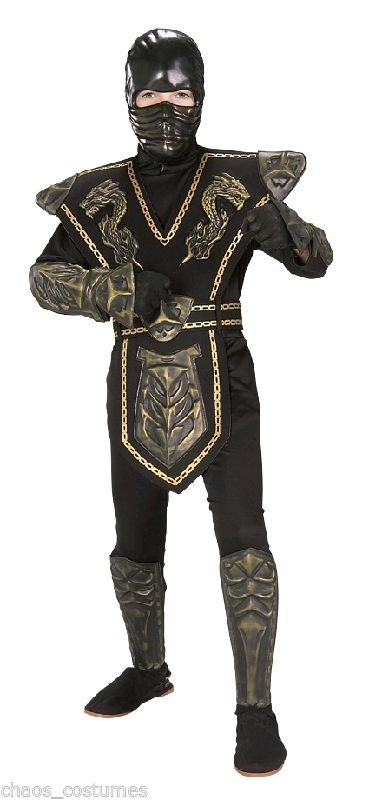Ninja Samurai Suit Hooded Dragon Design Armor Childs Boys Fancy Dress Costume