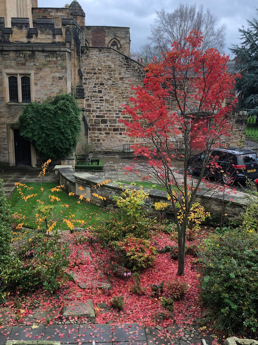 Durham Cathedral Library on #autumnleavesfalling