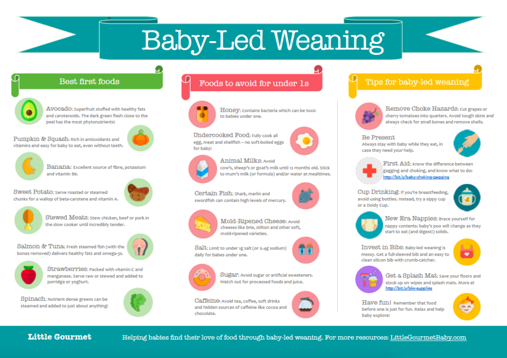 The Magic List of Baby-Led Weaning Foods [INFOGRAPHIC]