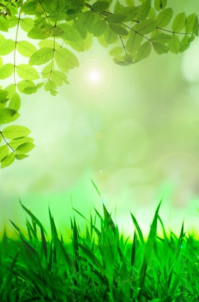 Natural Green Background Green Backgrounds Background Beautiful Backgrounds
