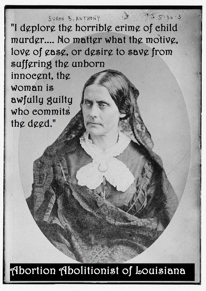 Suffrage Quotes: Susan B. Anthony Quote