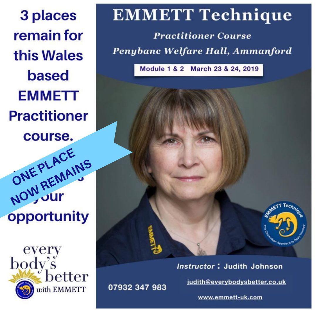 EMMETT Practitioner training in Wales Emmett technique
