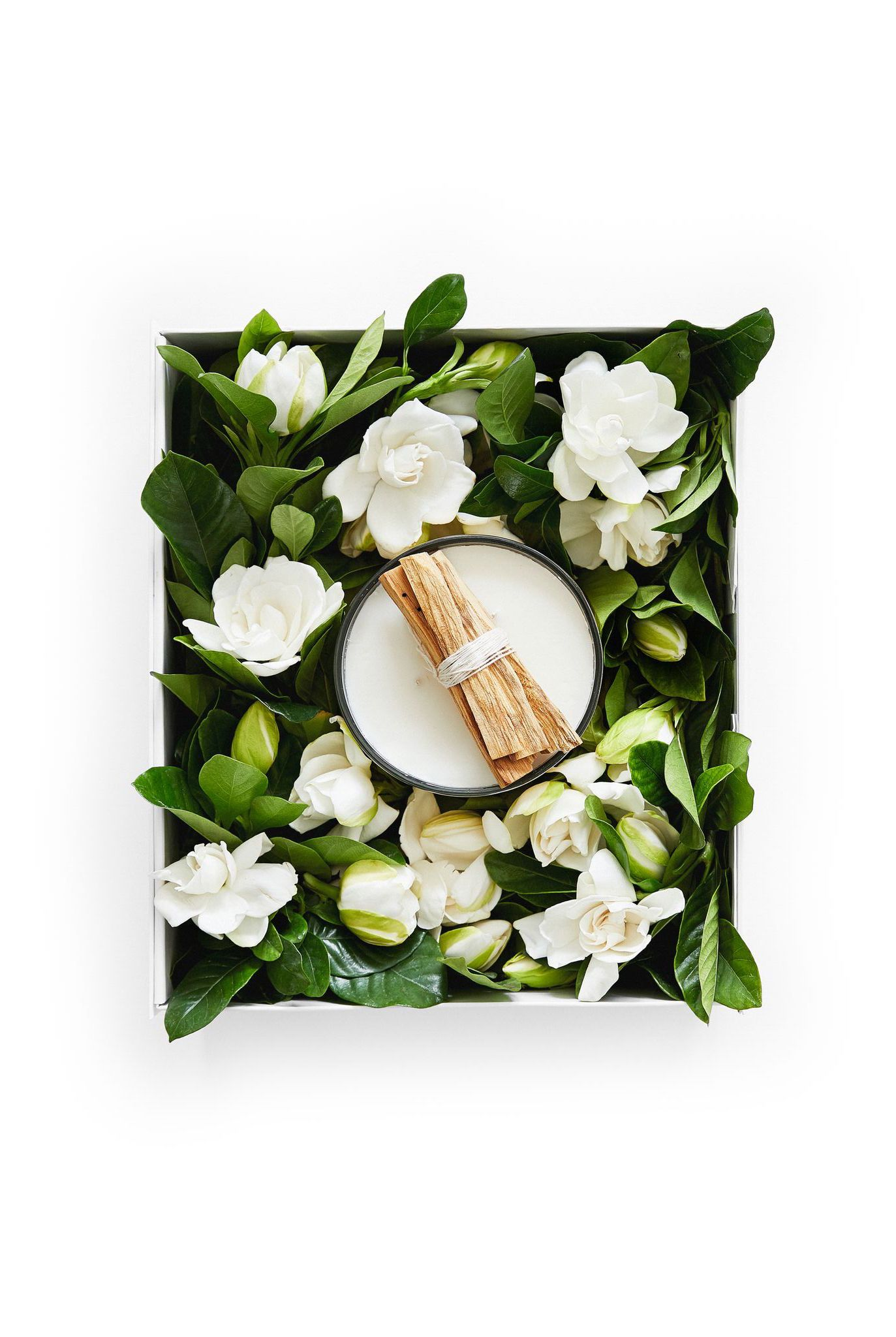 High Camp Gardenias High Camp S Signature Gardenia And Palo Santo Candle Captures The Essence Of Gardenias F Gardenia Luxury Garden Luxury Flower Arrangement