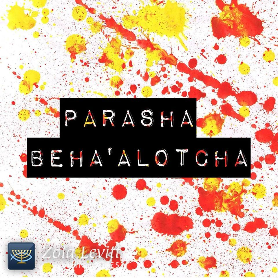Image result for shabbat behaalotcha images