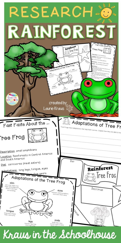 Rainforest Habitat Animal Adaptations Tpt Digital Activity Distance Learning Rainforest Activities Habitat Activities Activities [ 1440 x 720 Pixel ]