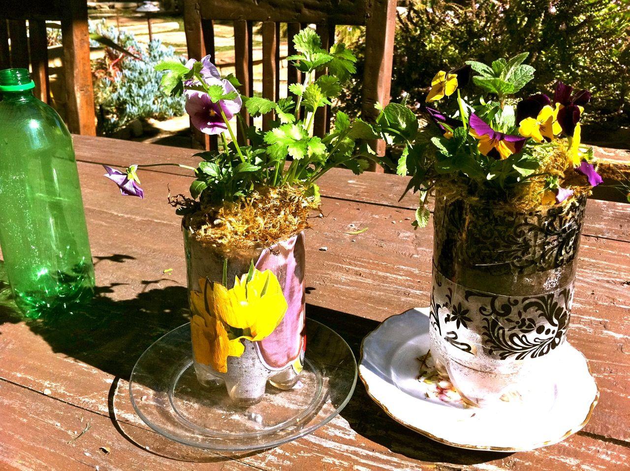 self watering planters made from repurposed plastic soda bottles