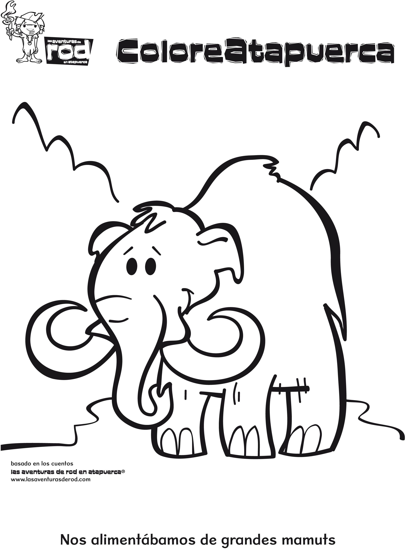 03 Dibujos Para Colorear Animales Mamut Jpg 2322 3054 La Prehistoria Para Ninos Dibujos Para Colorear Dibujos