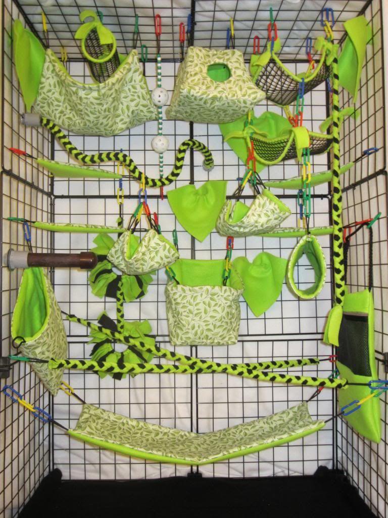 Rainbow Cheetah Green 15 Pc Sugar Glider Cage Set Rat Double