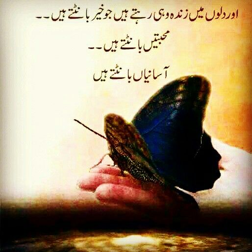Urdu Tattoo Quotes: Pin By Musheer Uddin Ubaid On Urdu Quotation