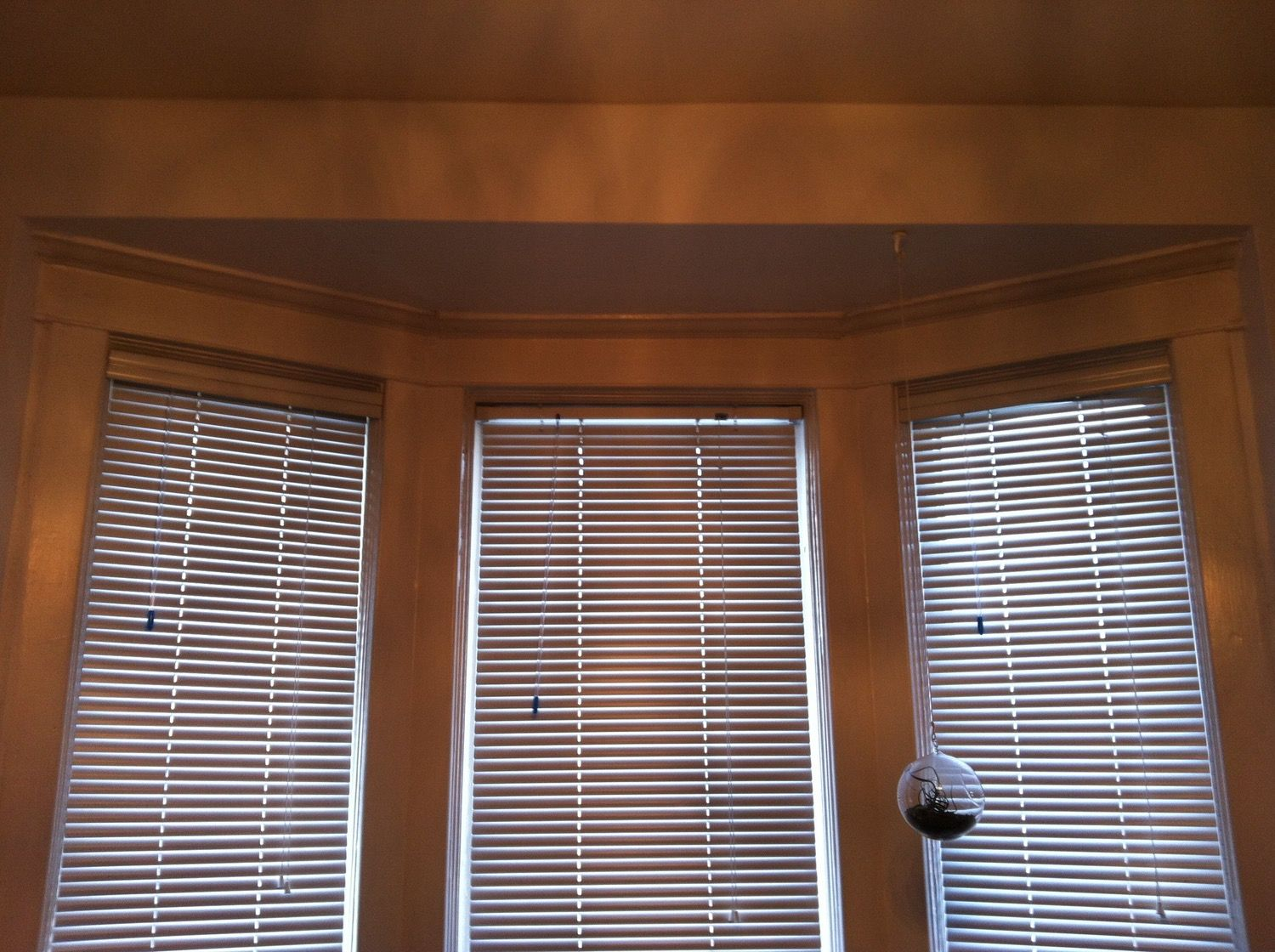 Q: I have two large bay windows (6'6