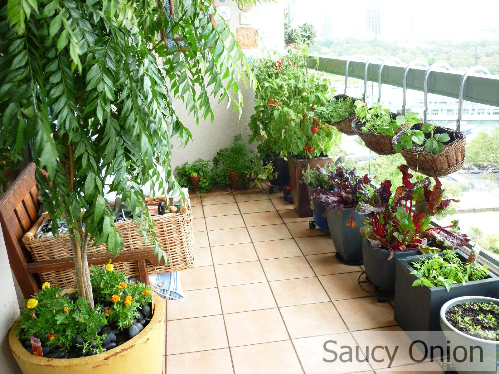 apartement : apartment balcony vegetable garden decorating ideas