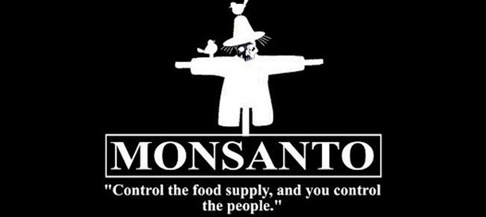 In Small Latin American Countrie Such A Guatemala Costa Rica And Nicaragua Most Farmer Do Not Know The Pro Con Of Using Genetically Modified Food Gmo Facts Organism List