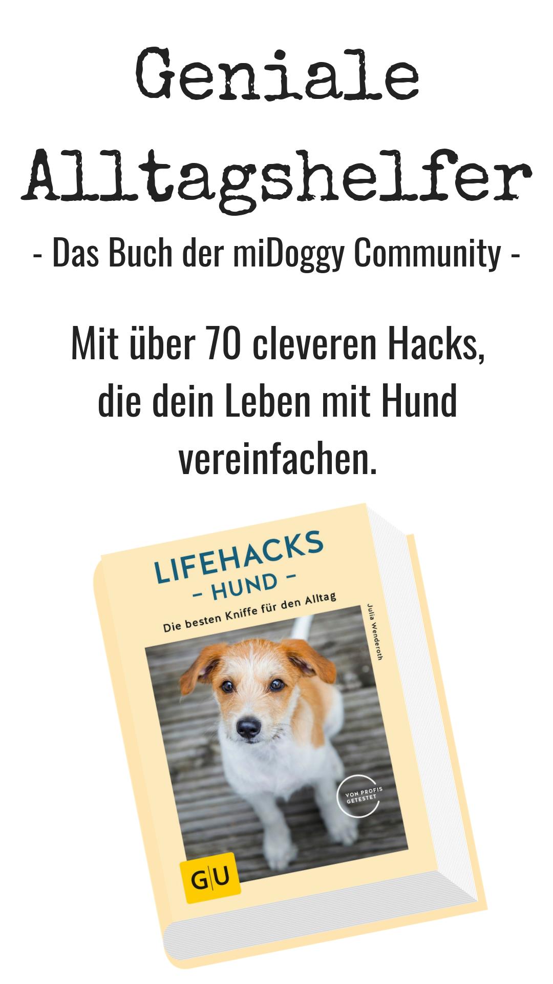 Hunde Tricks Hacks Tipps Ideen Bilder Hund Alltagshelfer Clever