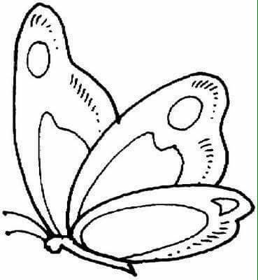Butterfly coloring page image by Rita Kanell on Crafts