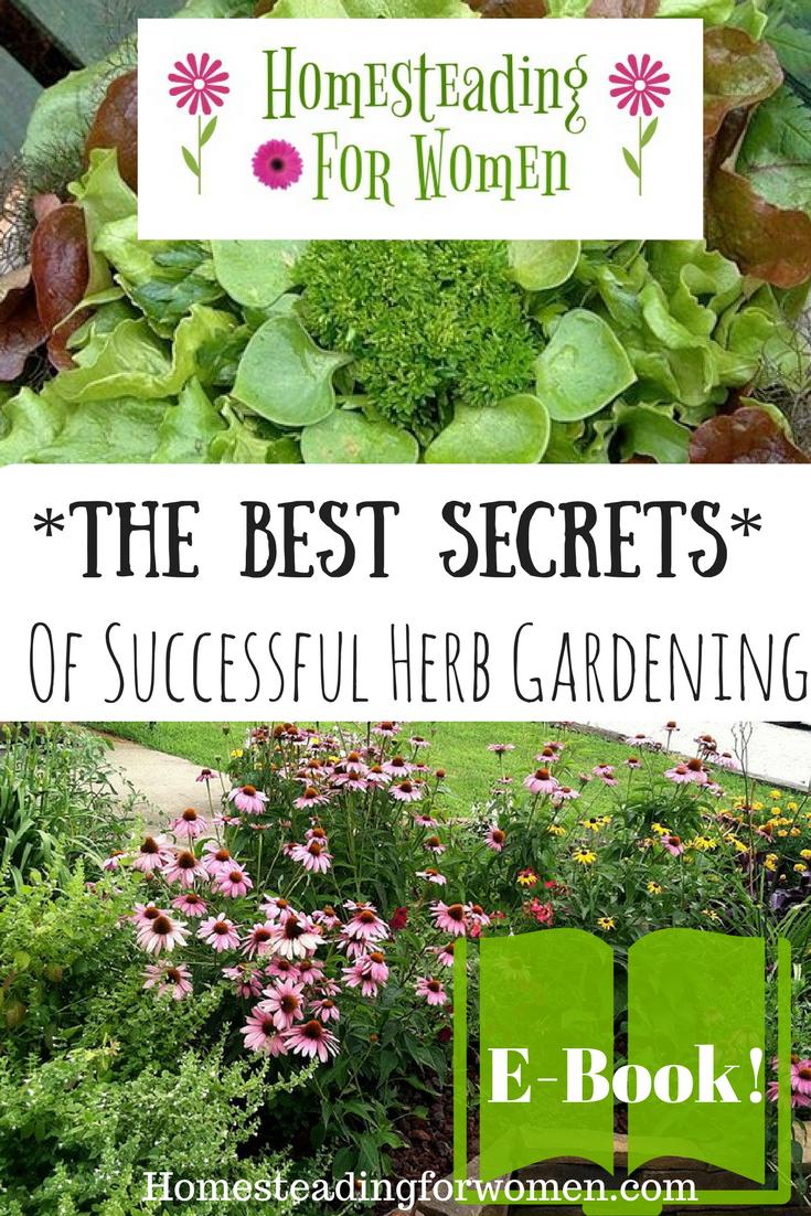 Best Secrets Of Successful Herb Gardening My New Ebook
