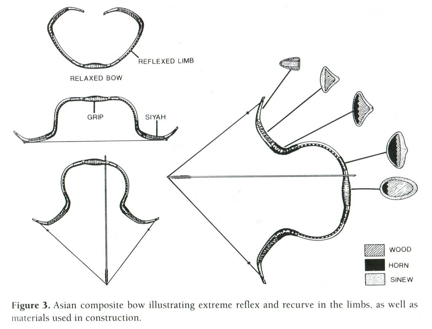medium resolution of composite bows weapon of ancient nomadic equestrian cultures rh legioilynx com horse diagram poster archery bow diagram