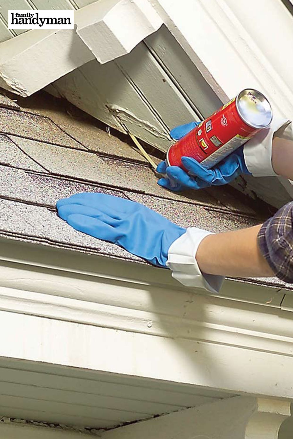 25 tips for controlling pests in and around your home