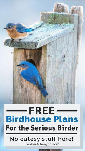 13 FREE Birdhouse Plans Easy PDF Video Instructions Bird Watching HQ