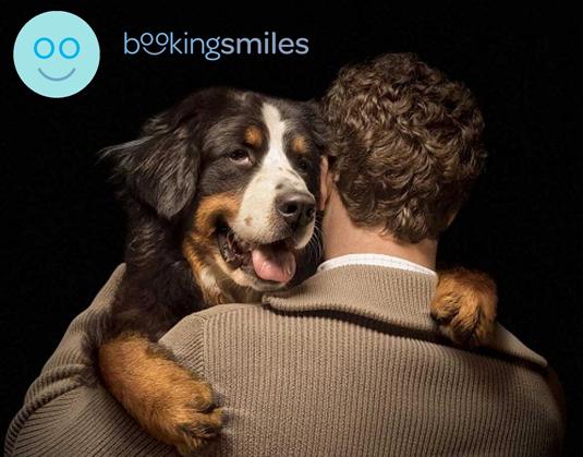 Cómo puedes ayudar a los animales con Booking Smiles - Booking Smiles