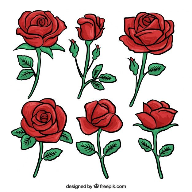 Download Set Of Red Roses Hand Drawn for free