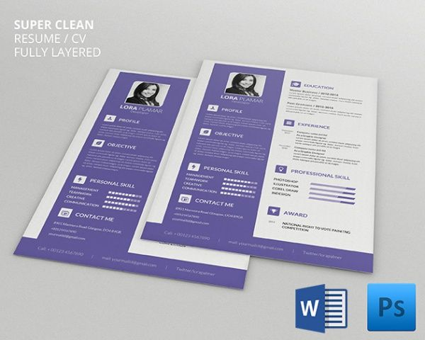 Developer Resume Template , Infographic Resume Template for - resume builder software free download