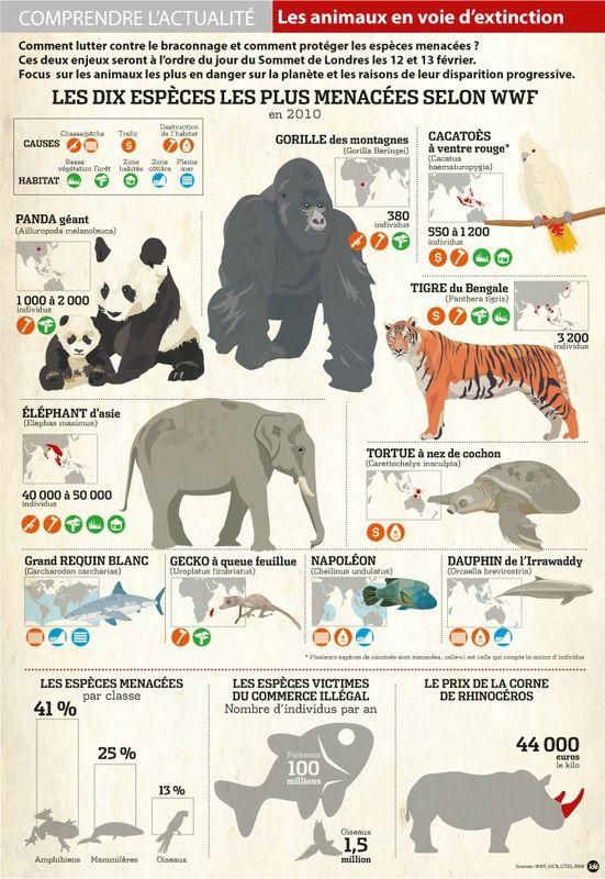 Animal En Voie De Disparition : animal, disparition, CPA-Animaux-voie-disparition, Animaux, Disparition,, Menacés,