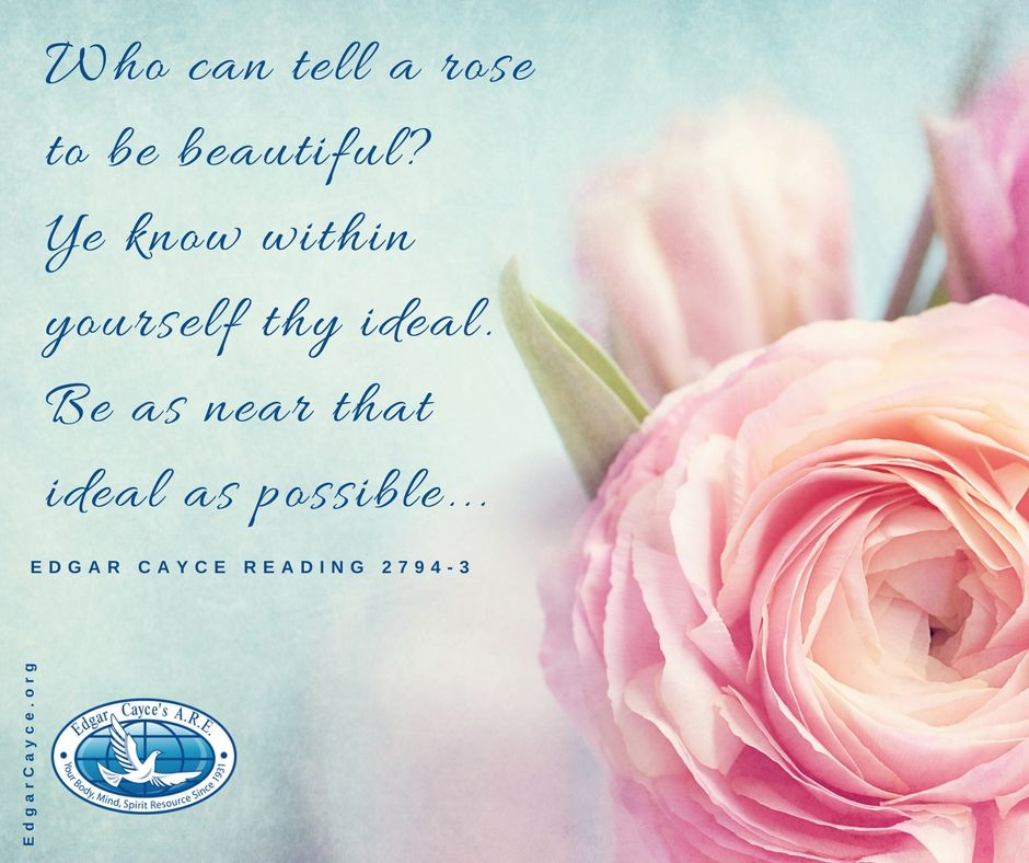 Who can tell a rose to be beautiful? Ye know within yourself thy ideal. Be as near that ideal as possible... #ideals #EdgarCayce reading 2794-3