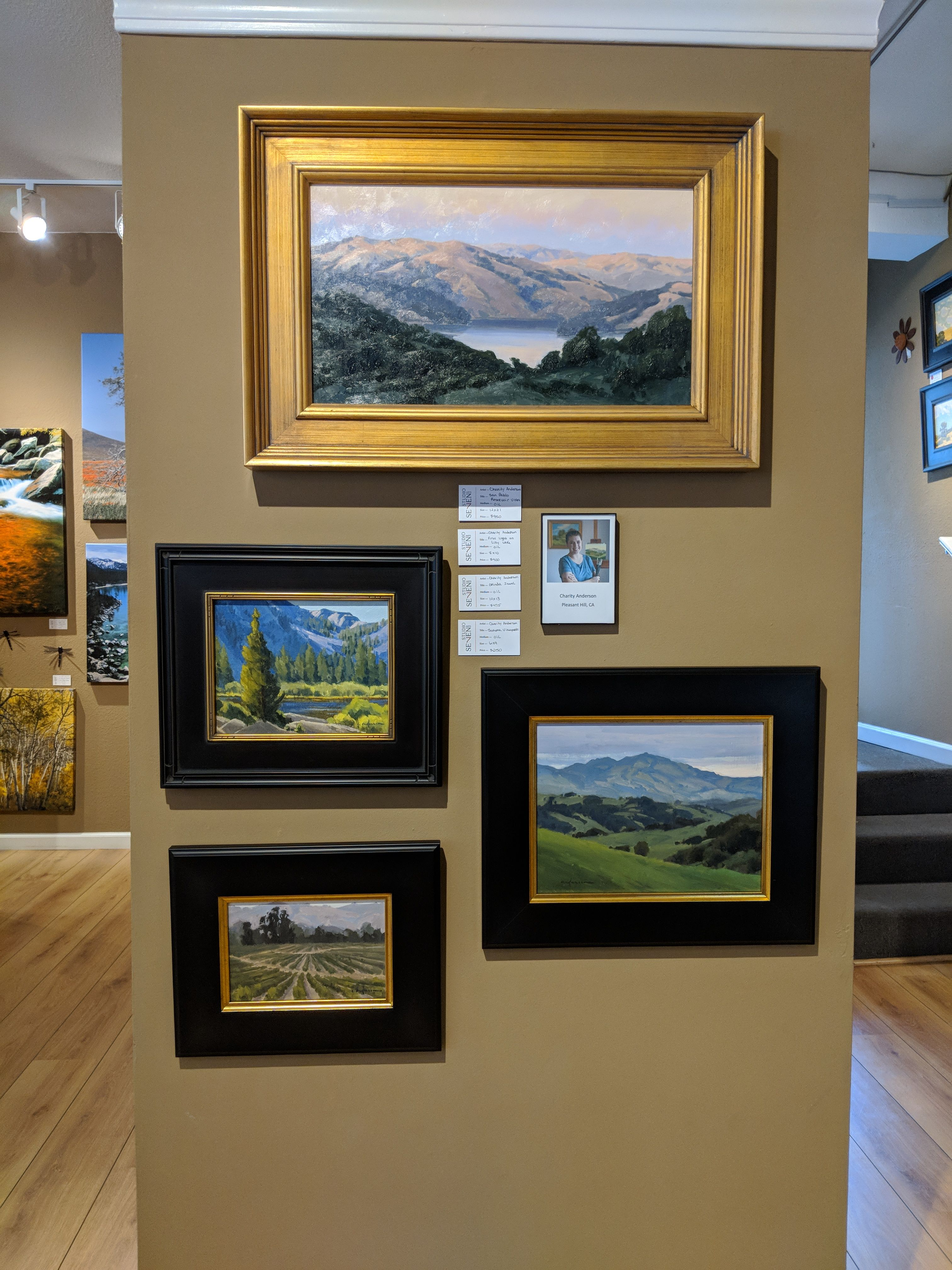 New plein air original oils from Charity Anderson Large