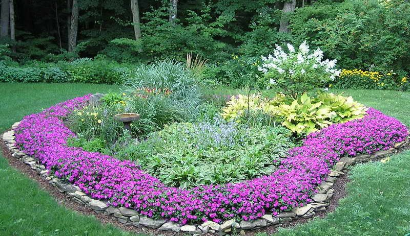 Annual Flower Bed Designs With Purple Flowers Jpg 800 462 Pixels
